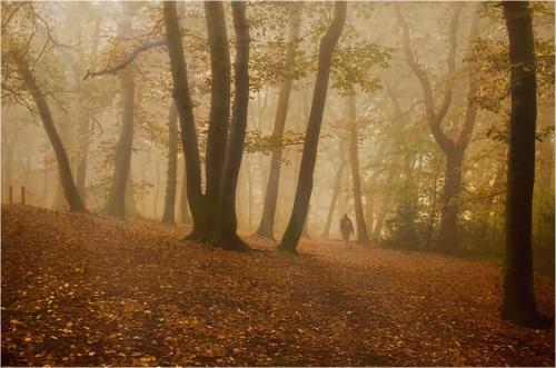 Edward Kosinski Rough Hill in Autumn