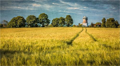 Glen Parker The Old Albrighton Windmill