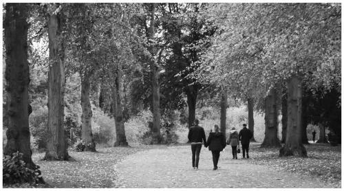 Maria Macklin An Autumn walk, Shrewsbury