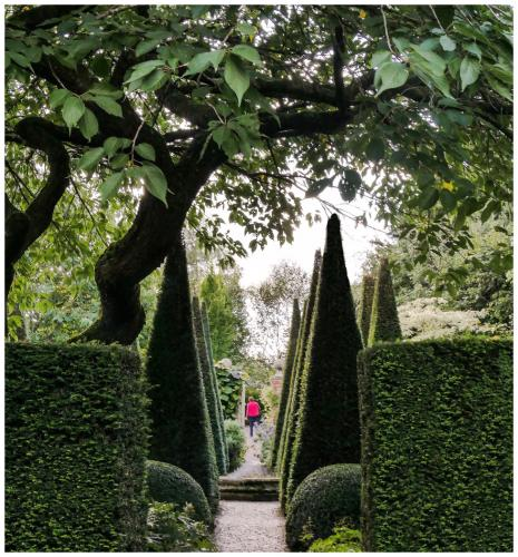 Maria Macklin Shape and Form, Wollerton Old Hall