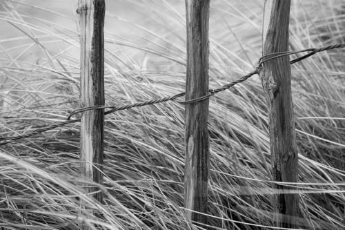 Wind Resistors