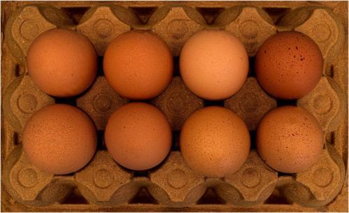 07 HC Adv Eight Eggs by Alan Fowler