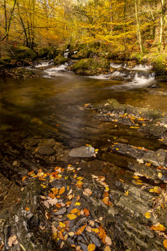 14Intermediate 6th place Force Falls Cumbria by Peter Palmer
