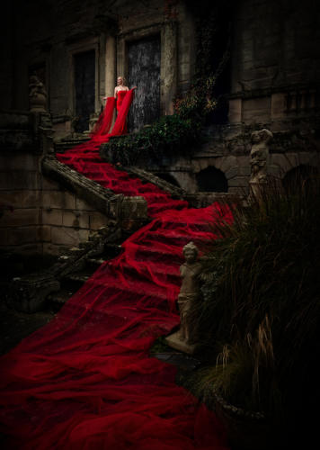 02 Advanced 2nd Place The Red Queen by Simon Hughes