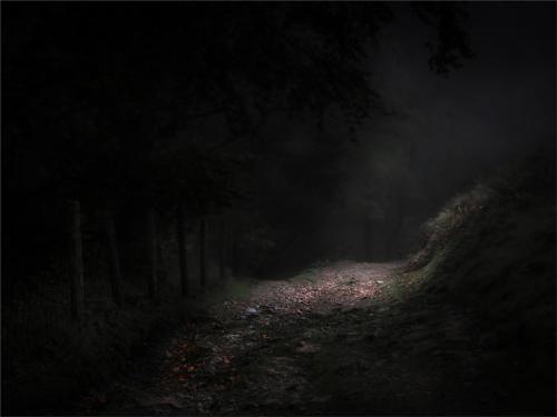 08 Advanced C Woodland Path by Richard Greswell
