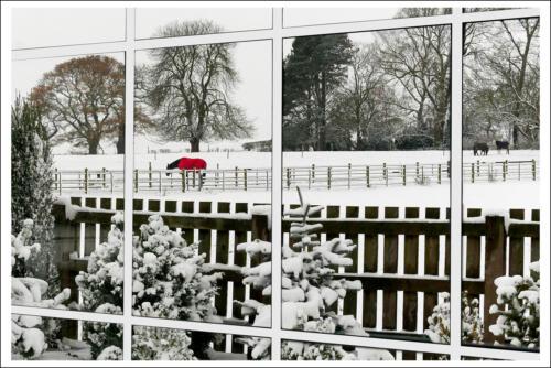 10 C Adv Snow Scene Through a Window by Maria Macklin