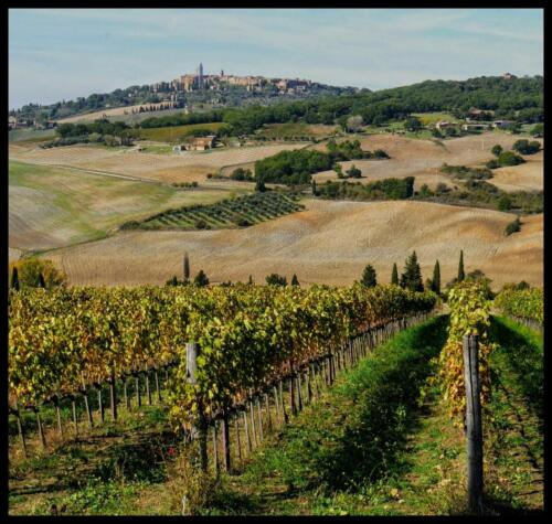 12 Int 1st Place Montalcino Over the Valley by John Pibworth