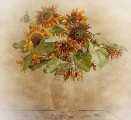 03 Adv 3rd Place Sunflowers by Fran Hartshorne