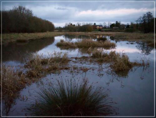 16 Int C  Twilight Floodplain by Sheila Morris