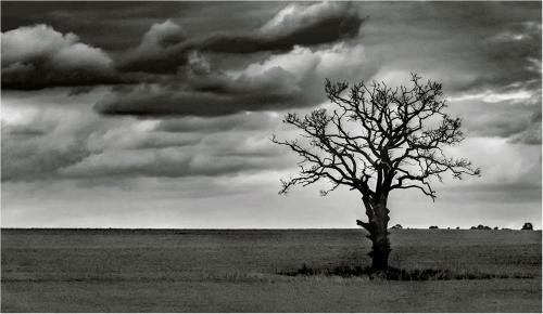 07. HC. Dark Sky Over Shropshire