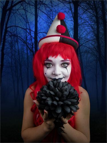 Beautiful Clown by Simon Hughes